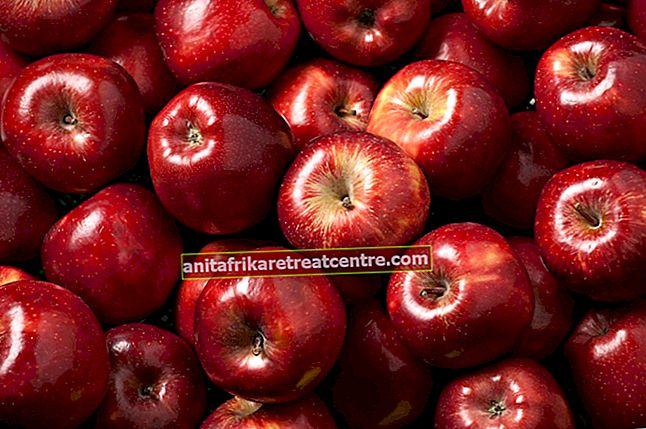 Apakah faedah epal? Perkara yang perlu diketahui mengenai epal ..