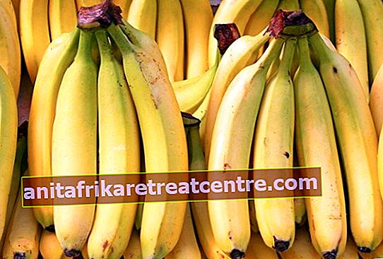 Apa manfaat pisang? Inilah manfaat pisang yang belum diketahui!