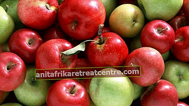 Quali sono i vantaggi delle mele rosse e verdi? Quali vitamine ci sono nella mela, a cosa serve?