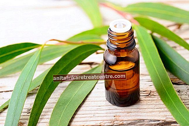 Utilizzo e benefici dell'olio di eucalipto